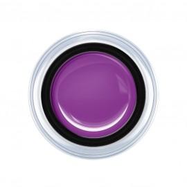 Aqua - Lilac 5g.