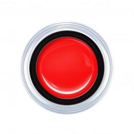 Aqua - Red 5g.