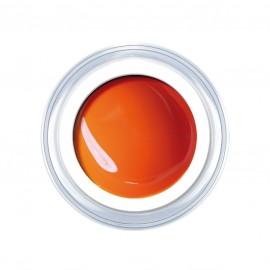 Bamboo-Orange 5g.
