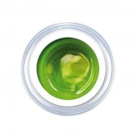 Spring-Green 5g