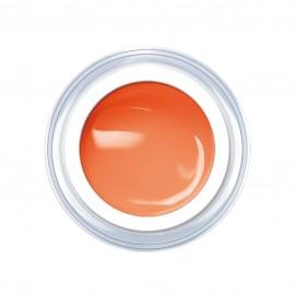 Pastel - Orange 5g.